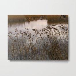 Wetlands at Far Ings Metal Print