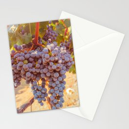 Grapevines 2 Stationery Cards