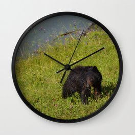 Bear cub emerges from Medicine Lake in Jasper National Park Wall Clock