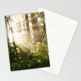 sunlit redwoods Stationery Cards