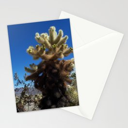 'Teddy Bear' Cactus Stationery Cards