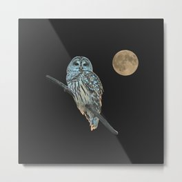 Owl, See the Moon (sq Barred Owl) Metal Print