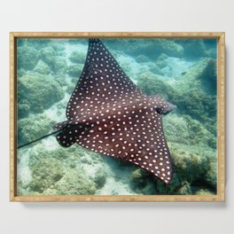 Watercolor Ray, Spotted Eagle Ray 15, St John, USVI Serving Tray