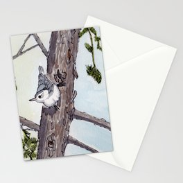 White Breasted Nuthatch Watercolour Painting Halifax NS Stationery Cards