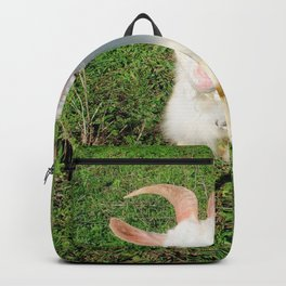 Billy 'The Goat' Backpack