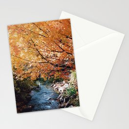 Fall Leaves on Autumn Trees - 35mm film Stationery Cards