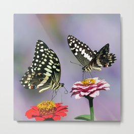 Swallow tail  or Christmas Butterfly Metal Print