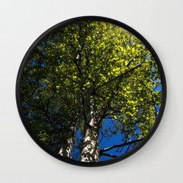 Birch Sunburst Wall Clock