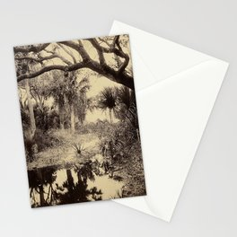 Live Oaks And Palmetto Everglades Florida 1886 - Vintage Photo By George Barker Stationery Cards