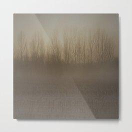 nebbia Metal Print