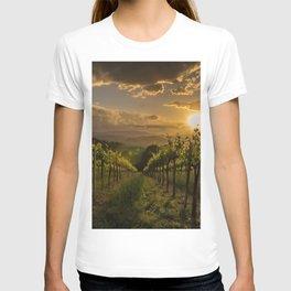 Vineyard Sunset, Tuscany, Italy T-shirt