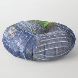 Seeking Discovery in Oregon Floor Pillow