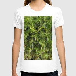 Palm tree jungle background - landscape photography T-shirt