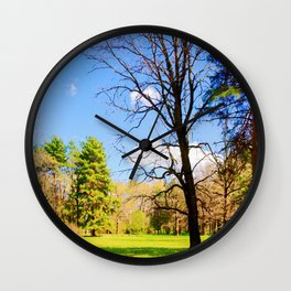 Spring In The Forest Wall Clock
