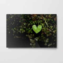 Heartfelt Nature at Hickory Canyons MDC Area (Missouri) Metal Print