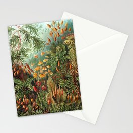 Vintage Print - Haeckel - Art Forms of Nature (1904): Muscinae / Bryophyta / Mosses Stationery Cards