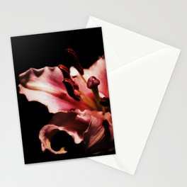 Nyx Series Frame B Stationery Cards