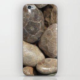 Petoskey Stones iPhone Skin