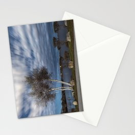 Birch tree by the pond Stationery Cards