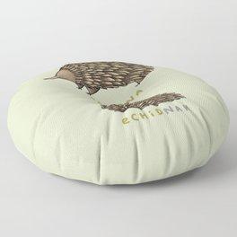 Echidna Echidnah Floor Pillow
