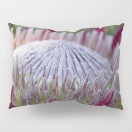 King Protea Island Flowers Jewel of the Garden Pillow Sham