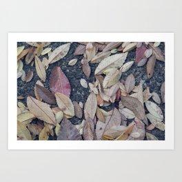 Soft Leaves Art Print