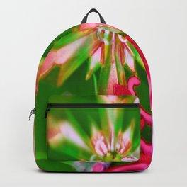 LAFAYETTE STARS 2  Backpack
