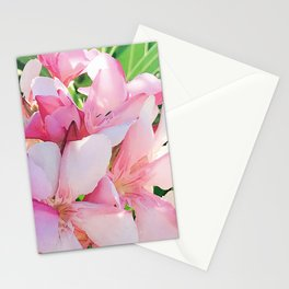 Pink Flowers In Sunlight and Shadows Stationery Cards