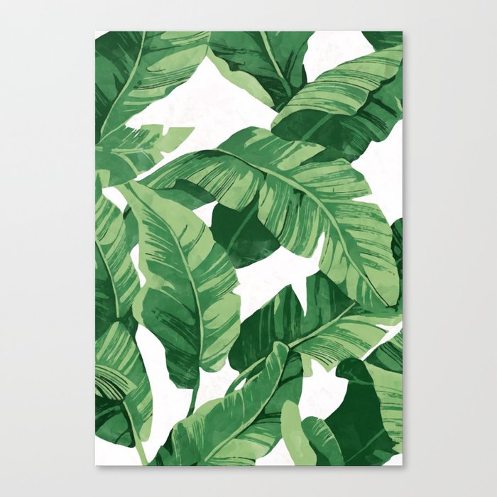 Tropical banana leaves IV Leinwanddruck