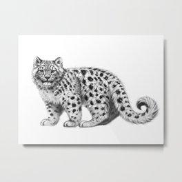 Snow Leopard cub g142 Metal Print
