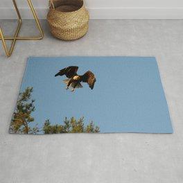 Bald eagle in flight Rug