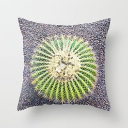 Round Green Cactus Throw Pillow