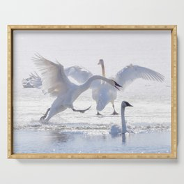 Trumpeter Swan Drama Serving Tray