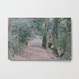 Luxulyan Woods Metal Print