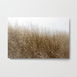 Tallgrass Metal Print