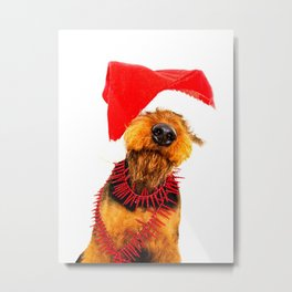 Airedale Terrier Christmas Photography Metal Print