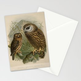 Vintage Print - A History of the Birds of New Zealand (1873) - Morepork; Laughing Owl Stationery Cards