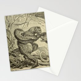 Vintage Print - Animals in Action (1901) - Mongoose (Rikki-Tikki-Tavi) attacking a Cobra Stationery Cards