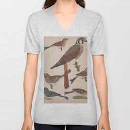 American Sparrow Hawk Field Sparrow Tree Sparrow Song Sparrow Chipping Sparrow Snow Bird13 Unisex V-Neck