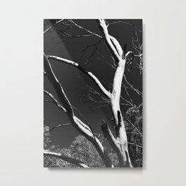Common Angles Metal Print