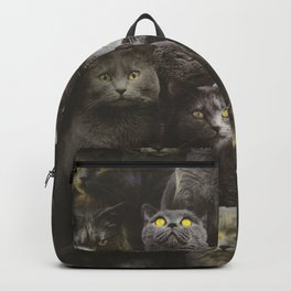 Chartreux Backpack