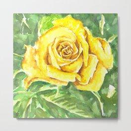 Yellow Rose Watercolor Painting Metal Print