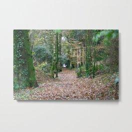 Luxulyan Woods 2 Metal Print
