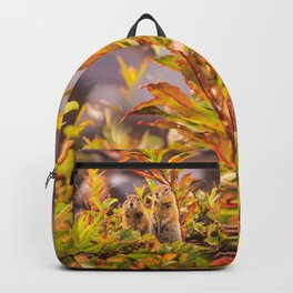 Autumn Picnic Backpack