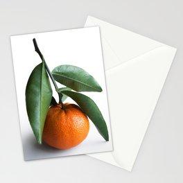 Orange Fruit Photography Stationery Cards
