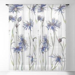 Blue Cornflowers, Illustration Sheer Curtain