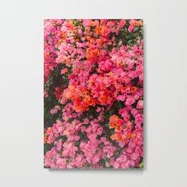 California Blooms Metal Print