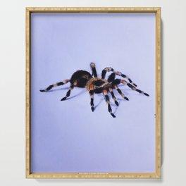 Halloween 3D spider Serving Tray