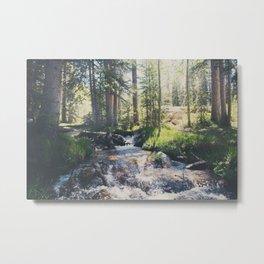 a mountain stream ... Metal Print