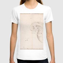 Johann Bayer - Uranometria / Measuring the Heavens (1661) - 17 Delphinus T-shirt
